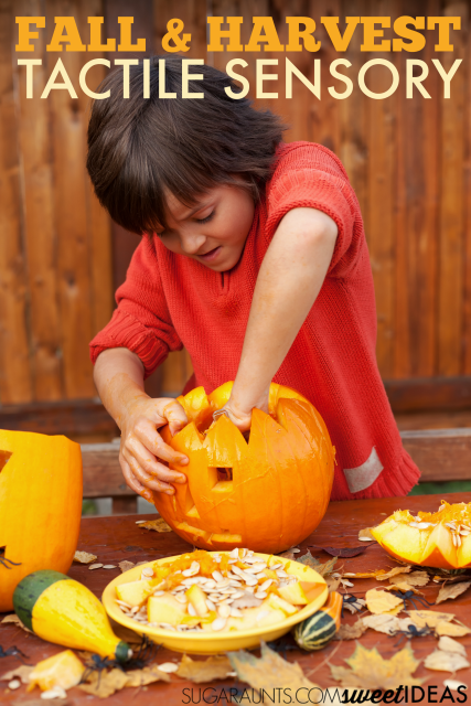 Fall tactile sensory play ideas for families and kids