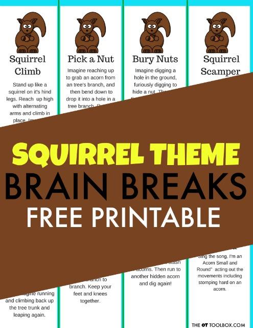 Squirrel brain breaks