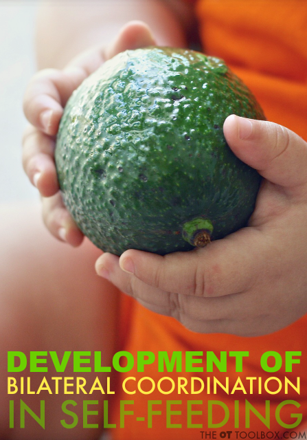 Development of bilateral coordination skills in feeding occurs throughout childhood.