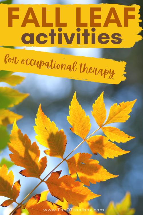 Leaf activities for occupational therapy and to build skills in fine motor development, sensory play, gross motor skills. Use fall leaves in therapy activities!