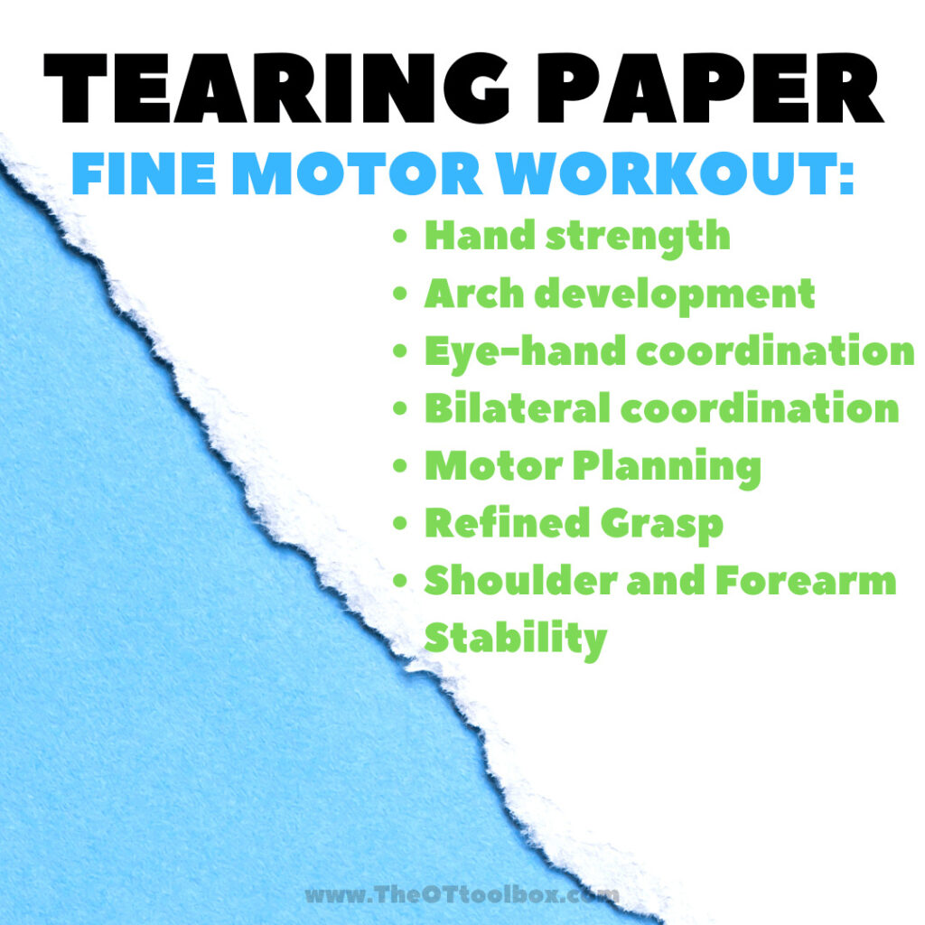 Tearing paper builds fine motor skills and endurance in fine motor precision, making it a fine motor workout!